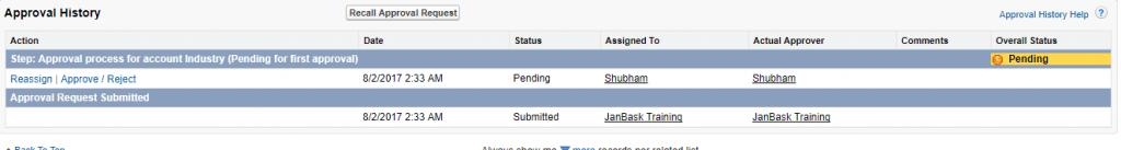 Account Janbask Salesforce Developer Edition
