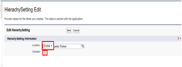 What is custom setting in Salesforce