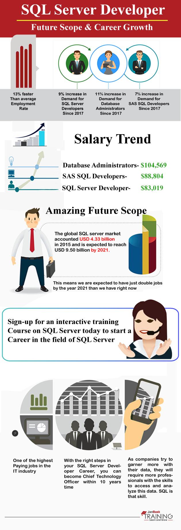 SQL Server Developer Future