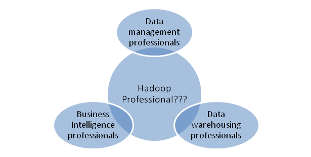 Hadoop Developer & Architect Role: Job Description & Responsibilities
