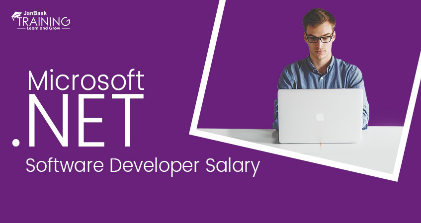 Microsoft .Net Software Developer / Programmer Salary in USA