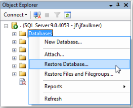 Restore a Database Backup from SQL