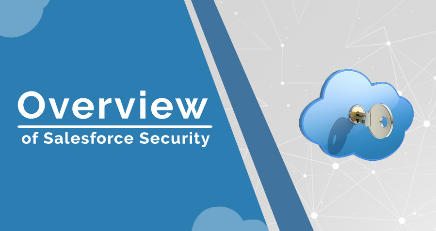 A Basic Overview for Salesforce Security