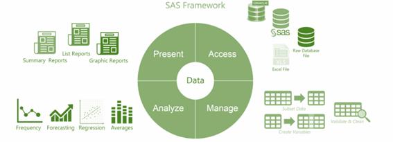 What are the SAS framework capabilities?