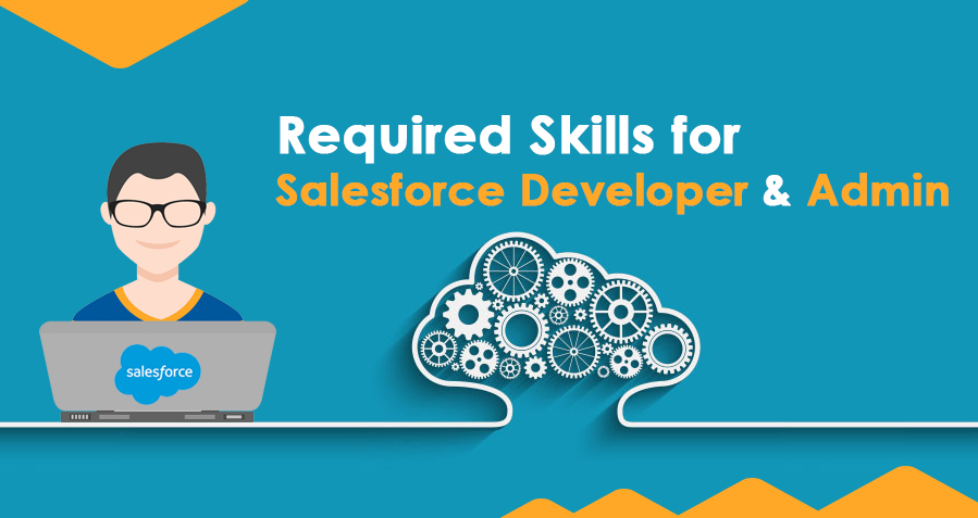 Organization Required Skills for Salesforce Developer or Admin