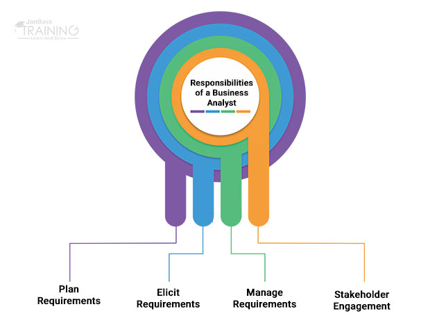 What are the responsibilities of a Business Analyst?