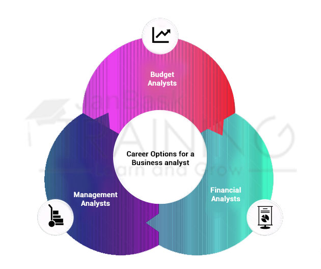 Career Options for a Business analyst