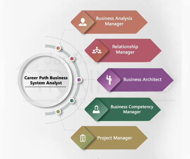 career path for a Business System Analyst?