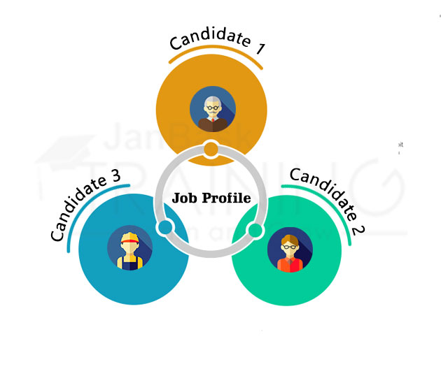Job Profile