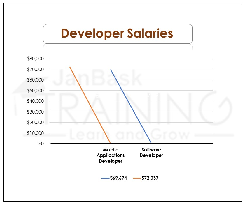 Developer Salaries