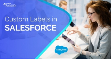 How To Use Custom Labels In Apex Class In Salesforce?