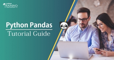 Python Pandas Tutorial Guide for Beginners