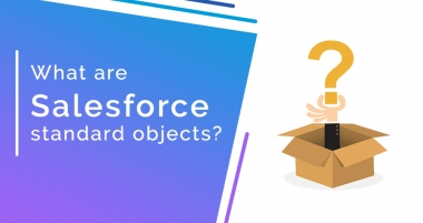 What are Salesforce Objects? Top 4 Salesforce Standard Objects