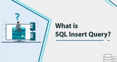What is the SQL Insert Query? How to Insert (Date, Multiple Rows, and Values in Table)