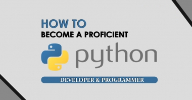 How to Become a Proficient Python Developer & Programmer