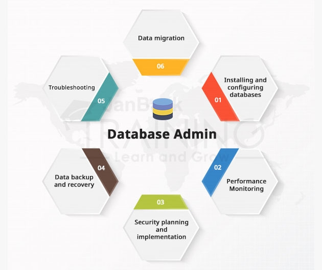 In a DBMS, what is a Database Admin?