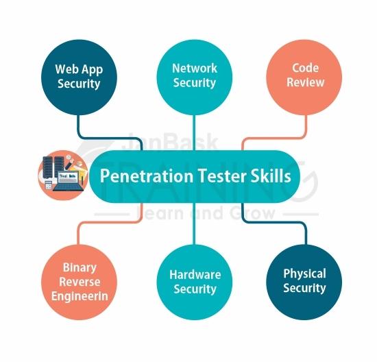 Penetration Tester Skills
