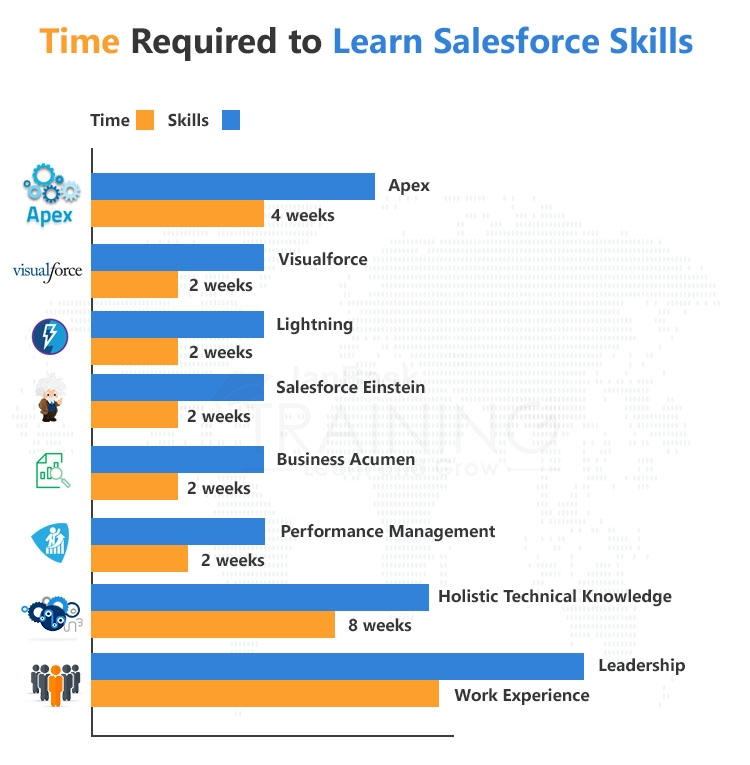 Essential Salesforce Skills & Time required to Learn them
