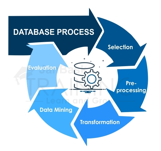 Database Process