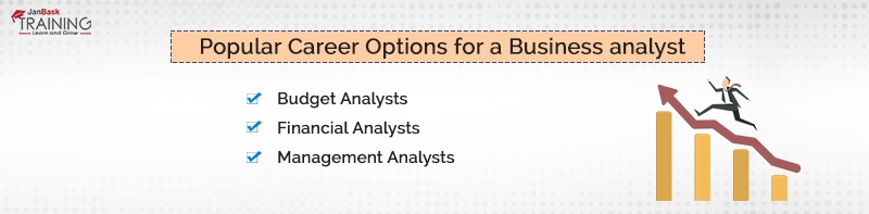 Popular Career Options for a Business analyst