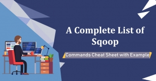 A Complete List of Sqoop Commands Cheat Sheet with Example