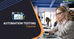 Automation Testing Tutorial Guide for Beginner