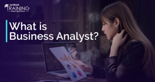 Business Analyst Tutorial Guide for Beginner