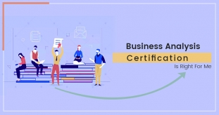 How To Choose The Appropriate Business Analysis Certification?