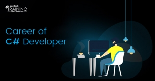 An insight into the Career of C# developer