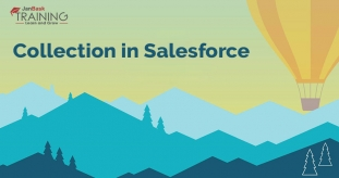 What is Collection in Salesforce?