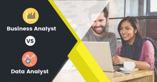 What is the Difference between Business Analyst and Data Analyst?