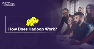 What is Hadoop and How Does it Work?