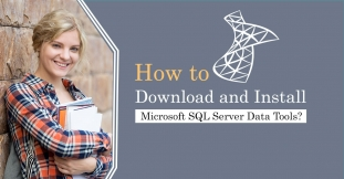 How to Download and Install Microsoft SQL Server Data Tools?