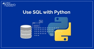 How to Use SQL with Python?