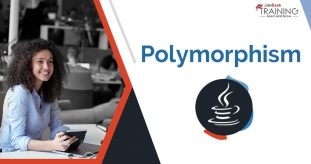 What is Polymorphism in Java? Type of Polymorphism in Java with Example