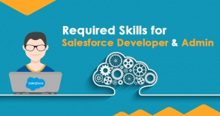 How can Learning Salesforce Developer Skills Lead you to your Dream Job?