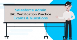 Salesforce Admin 201 Certification Practice Exams and Questions