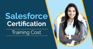 Salesforce Training & Certification Cost for Admin, Developer