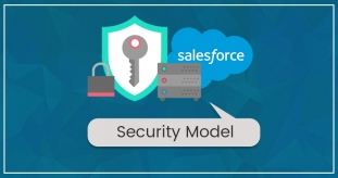 Salesforce Security Model- What Do You Need To Know?