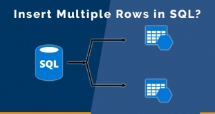 How to Insert Multiple Rows Using Stored Procedure in SQL?