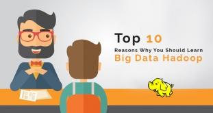 Top 10 Reasons Why Should You Learn Big Data Hadoop?