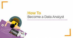How to Become a Successful Data Analyst?