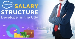 Salary Structure of a Salesforce Developer in the USA