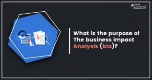 What is Business Impact Analysis and Its's Purpose?