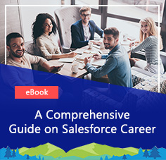 Salesforce Master Training